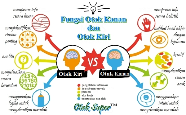 fungsi otak kiri dan otak kanan