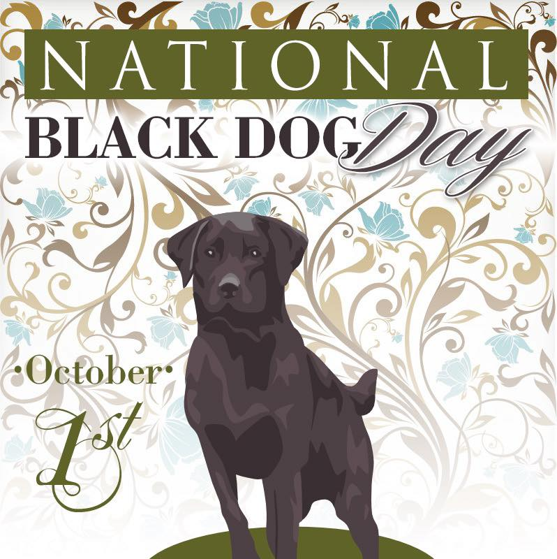 National Black Dog Day Wishes for Whatsapp
