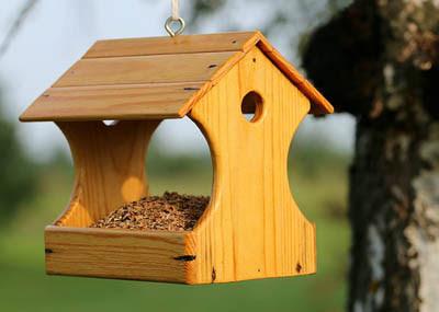 Photo of an empty bird feeder (svklimkin Pixabay)