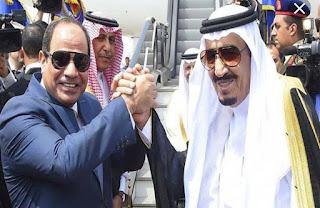 """الرئيس """"السيسي"""" والملك """"سلمان"""" يوجهان """"تحذيرا شديد اللهجة"""" لدول أوروبية"""" من العنصرية ضد المسلمين"""