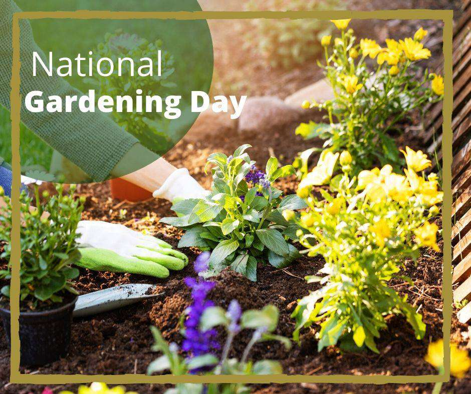 National Gardening Day Wishes for Instagram