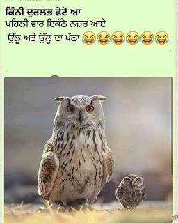 Punjabi Images for Whatsapp
