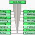 Cabang-cabang bidang-bidang Biologi