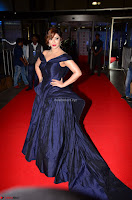 Payal Ghosh aka Harika in Dark Blue Deep Neck Sleeveless Gown at 64th Jio Filmfare Awards South 2017 ~  Exclusive 034.JPG