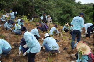 بالفرنسية préservation l'environnement JAPAN-3.PNG