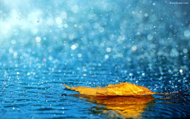 Beautiful Rain Season Wallpapers