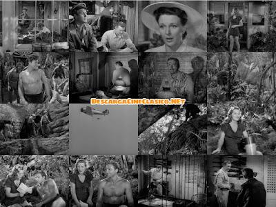 Tarzán y la fuente mágica (1949)