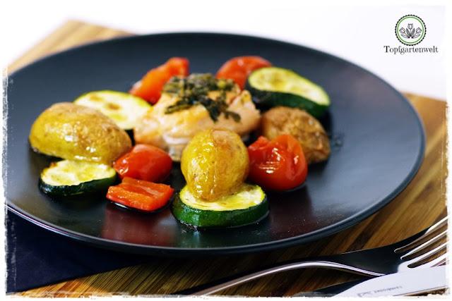 Gartenblog Topfgartenwelt Buchvorstellung Blech-Kochbuch 1 Blech 50 Rezepte: schnelle Gerichte aus dem Ofen - Ofenrezepte