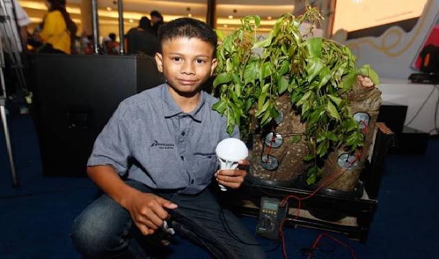 Gempar !!!....Bocah Kelas 2 MTSN dari Aceh Ini Sulap Pohon Kedondong Jadi Sumber Listrik