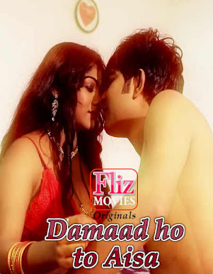Damad Ho To Aisa Web series Wiki