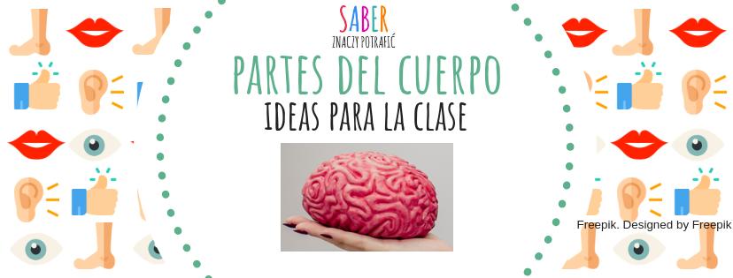 PARTES DEL CUERPO: ideas para la clase | CZĘŚCI CIAŁA: pomysły na zajęcia