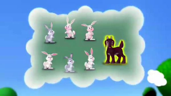 six bunnies, and a goat, too