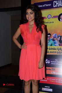Actress Shriya Saran Pictures in Pink Short Dress at Republic Hindu Coalition (RHC) Charity Concert Press Meet .COM 0042.JPG