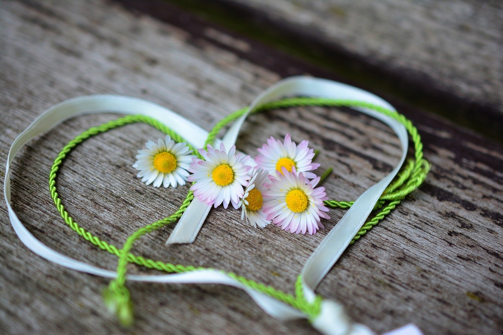 Daisy Heart Romance Valentine's Day Love Spring image