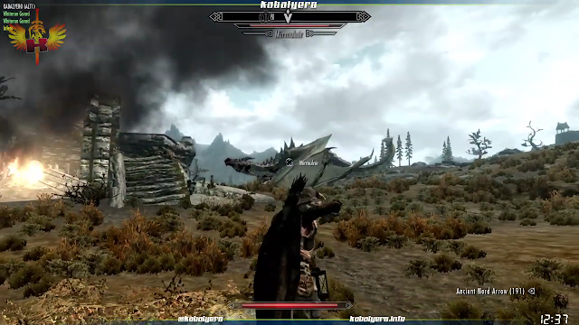 A dragon appeared from the sky and started attacking.