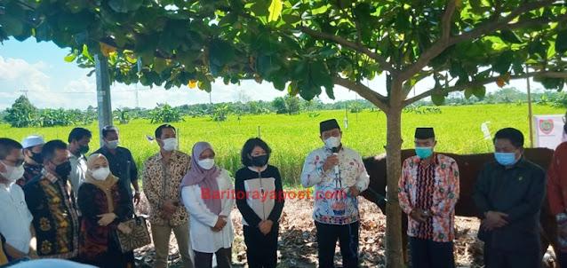Wagub Kalteng Serahkan 28 Sapi Qurban di Pulang Pisau