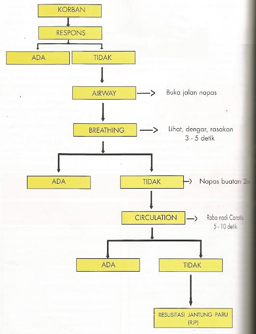 Diagram Alir Resusitasi Jantung Paru (RJP)