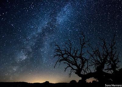La vía láctea entre un cielo estrellado