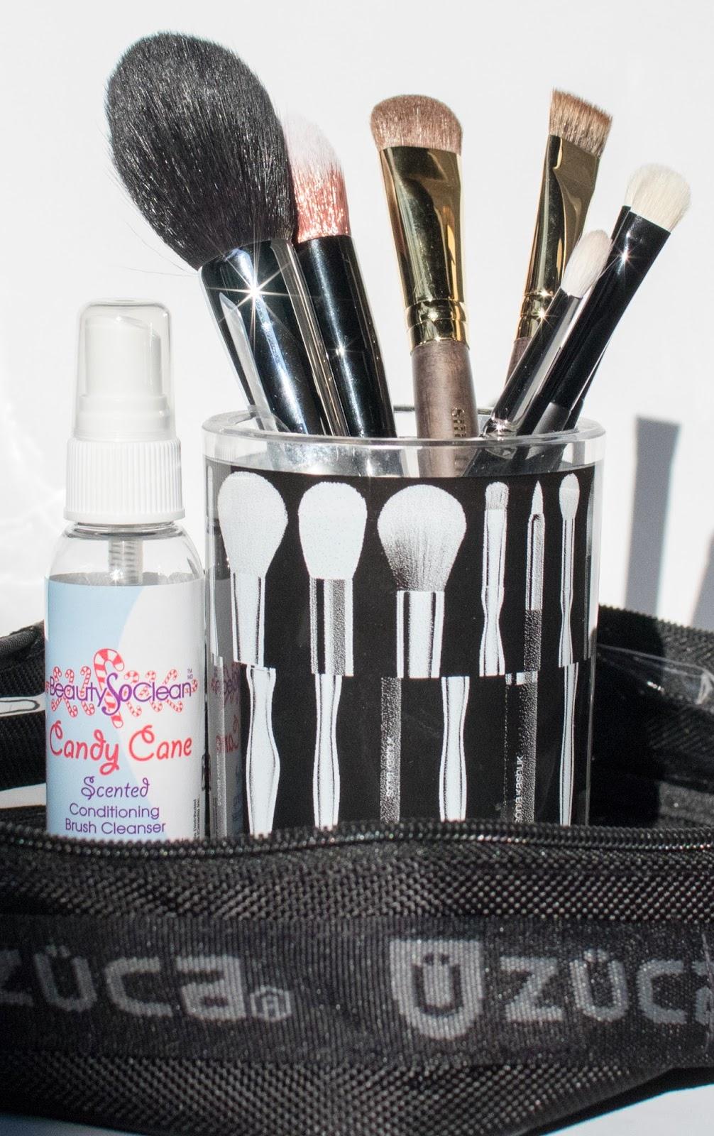 The Makeup Show LA Brushes/Brush Care Haul