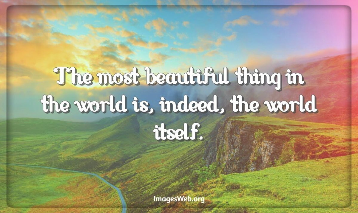 Happy World Day Quotes