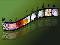 assemblage d'images façon film avec Gimp