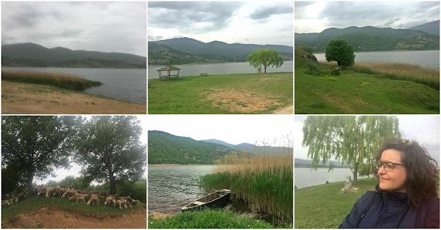 λίμνη ζάζαρη