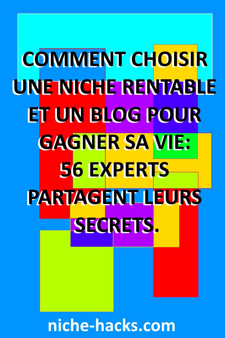 Comment choisir une niche rentable et un blog pour gagner sa vie: 56 experts partagent leurs secrets