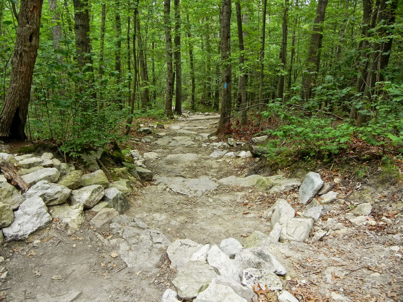 My World in Pennsylvania and Beyond: Pole Steeple Trail at ...
