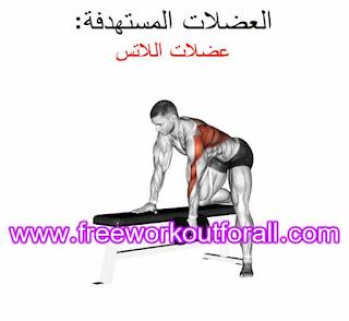 اقوى تمارين عضلة الظهر للمبتدئين بالفيديو