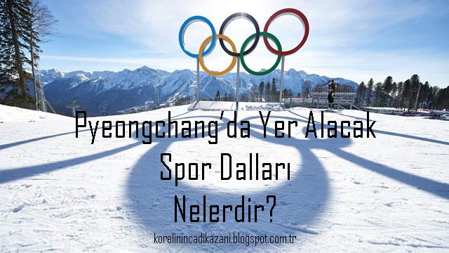 Pyeongchang'da Yer Alacak Spor Dalları Nelerdir?