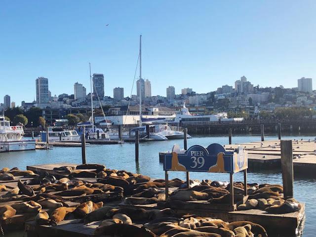 promenade à Fisherman's Wharf San Francisco