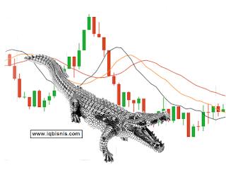 rahasia setting strategi trading indikator iq option paling akurat