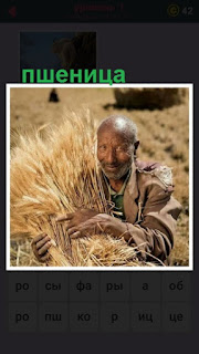 мужчина собрал пшеницу и держит в руках большой сноп