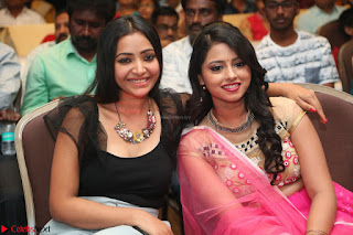 Geethanjali and Swetha Basu at Mixture Potlam Movie Audio Launch Feb 2017 013.JPG