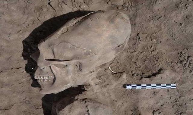 ΑΝΑΚΑΛΥΨΗ ΜΕΓΑΤΟΝΩΝ! Βρέθηκε στο Μεξικό κρανίο εξωγήινης μορφής… (ΒΙΝΤΕΟ)