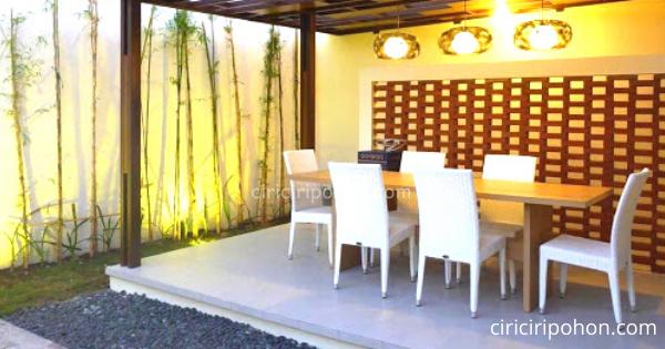 Ciri Ciri Pohon Bambu