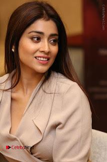 Actress Shriya Saran Stills in Stylish Dress at Gautamiputra Satakarni Team Press Meet  0053.JPG