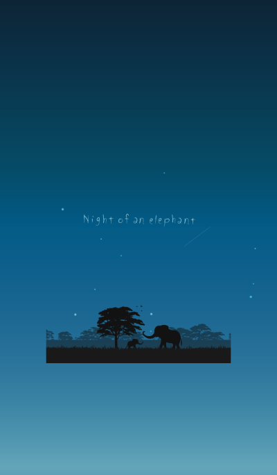 Night of an elephant