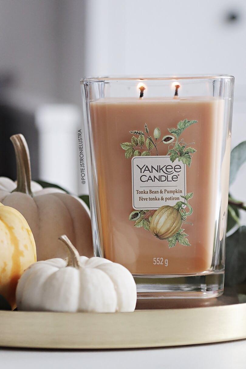 yankee candle tonka bean and pumpkin nowość na jesień 2019