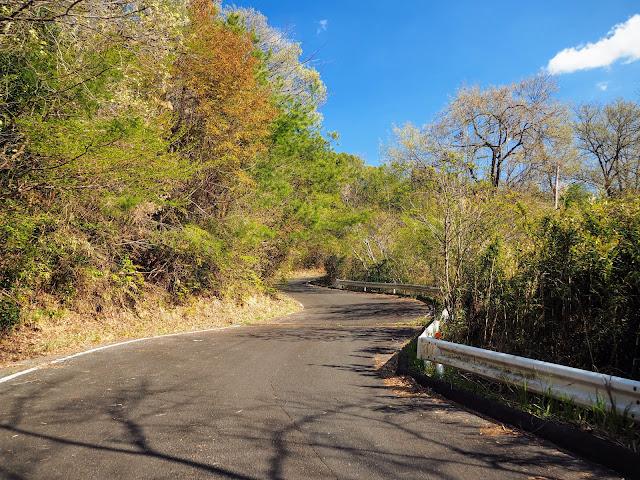 林道東山花の入線