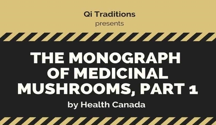 Health Canada's Monograph of Medicinal Mushrooms #infographic