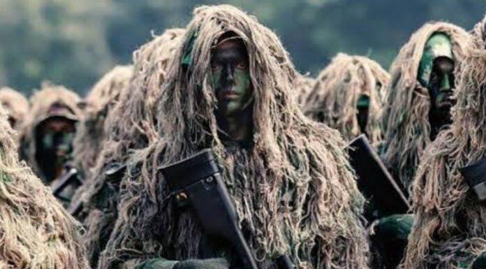 Dulu Pernah Tumpas Pemberontakan PKI, Pasukan Ini Sekarang Diutus 'Habisi' KKB Papua