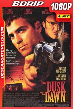 Del crepúsculo al amanecer (1996) 1080p BDrip Latino – Ingles