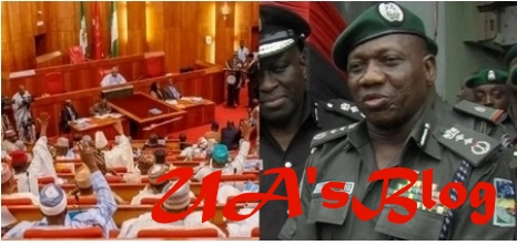 Senate summons IGP Idris, wants police officers redeployed to their state of origin
