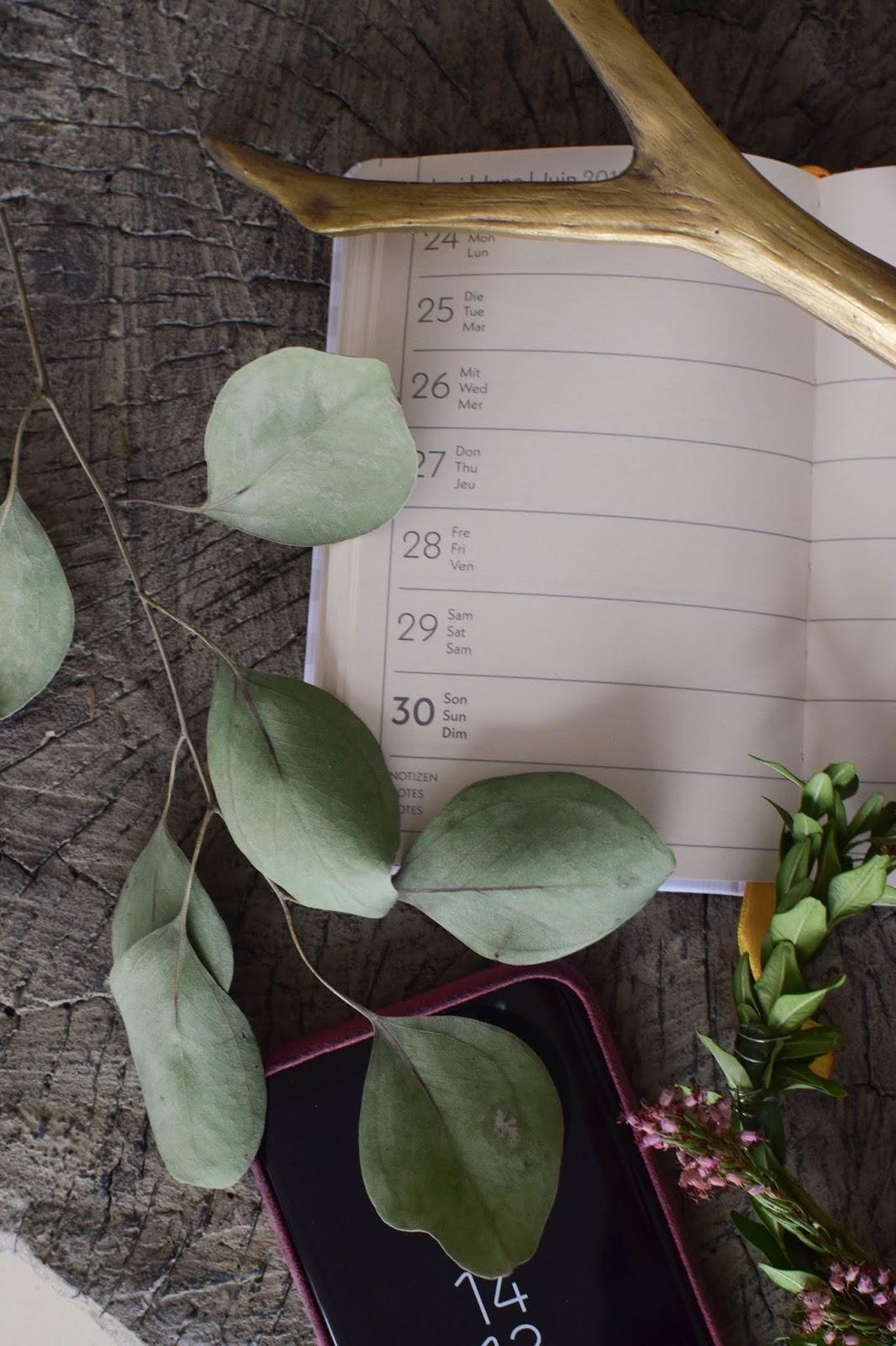 Kalender 2019 von teNeues. Terminpaner praktisch und übersichtlich