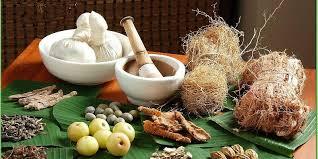 atau dikenal juga sebagai obat tradisional ialah obat Pengertian obat herbal secara umum