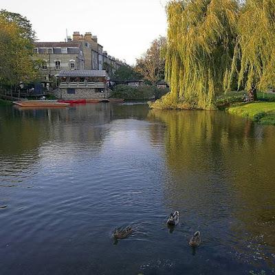Mill Pond, Cambridge