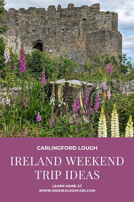 Carlingford Lough Ireland