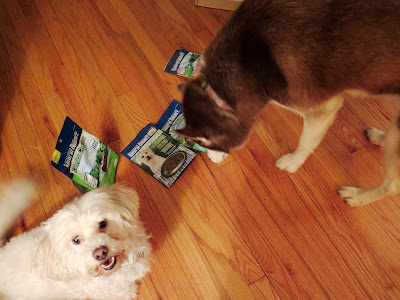 My dogs were so excited about all the yummy Natural Balance treats we got!