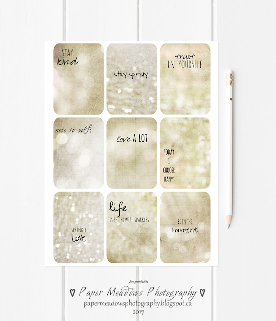 Paper Meadows Photography Blog-Free Printable Planner Cards, Journal Cards, Vision Board Cards